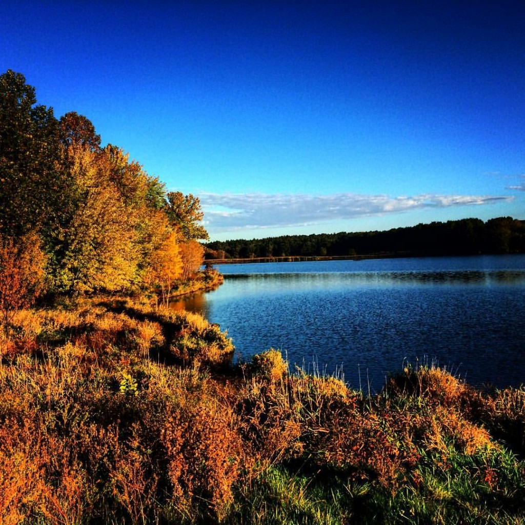 Lake Zorinsky, last fall.